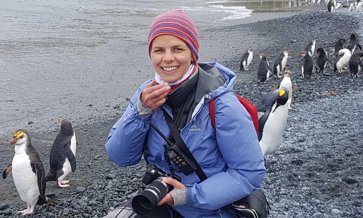 CassiaJackson_5_CassiaJackson_ALL_Endemic-Royal-Penguins-at-Macquarie-Island