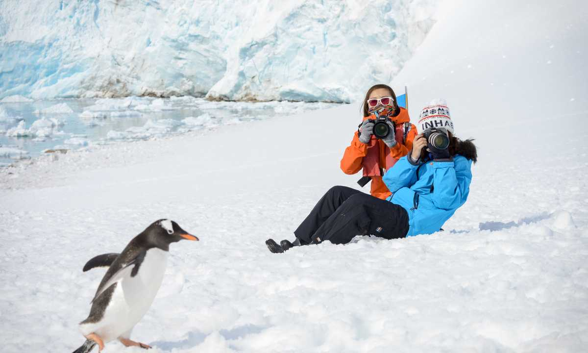 PL_3_PL_RTD_penguin_gentoo_people
