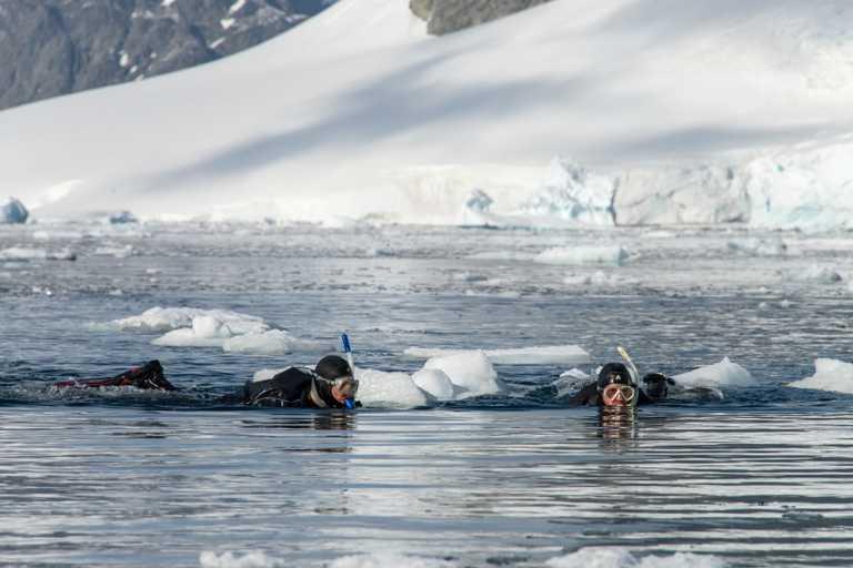 AUR_3_AUR_RTD_Snorkeling_in_Antarctica_e
