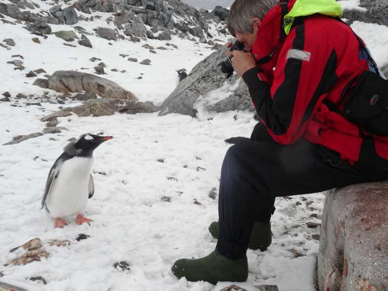 JN_3_JN_ALL_gentoo antarctica photographer EDIT