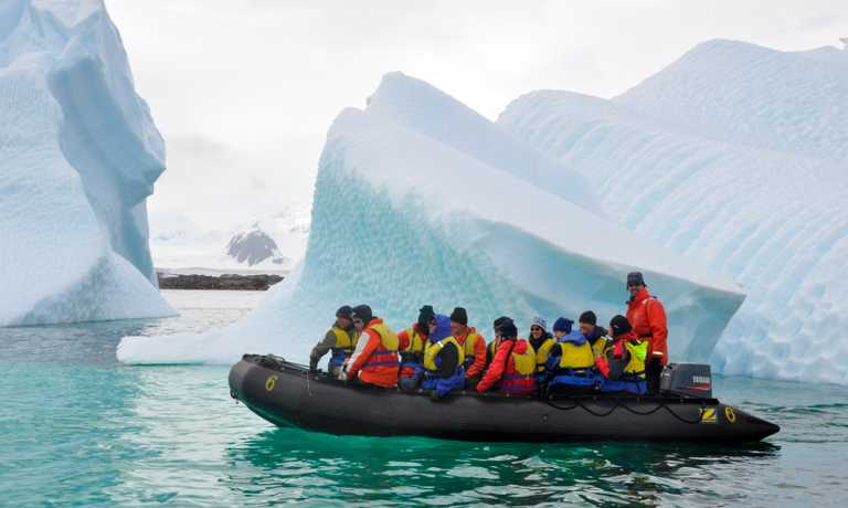 Wild Antarctic Peninsula