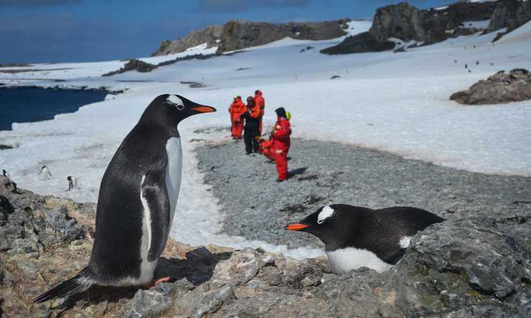 Overnight trip in Antarctica