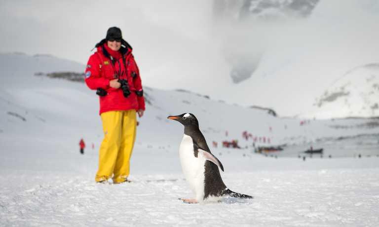 Cruise to The Antarctic Peninsula